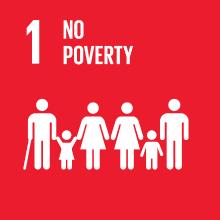 Goal 1: no poverty