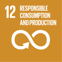 Goal 12: responsible consumption and production