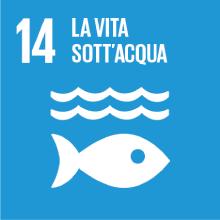 Obiettivo 14: la vita sott'acqua