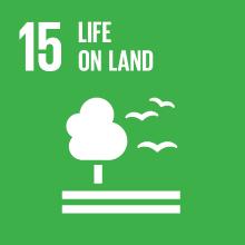 Goal 15: life on land